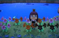 Animal Crossing: New Horizons Hybrid Flowers Guide -- How To Crossbreed Flowers